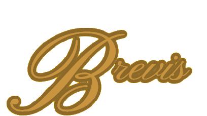 Vokalni ansambl Brevis